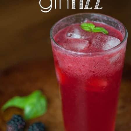 Blackberry Gin Fizz | Self Proclaimed Foodie