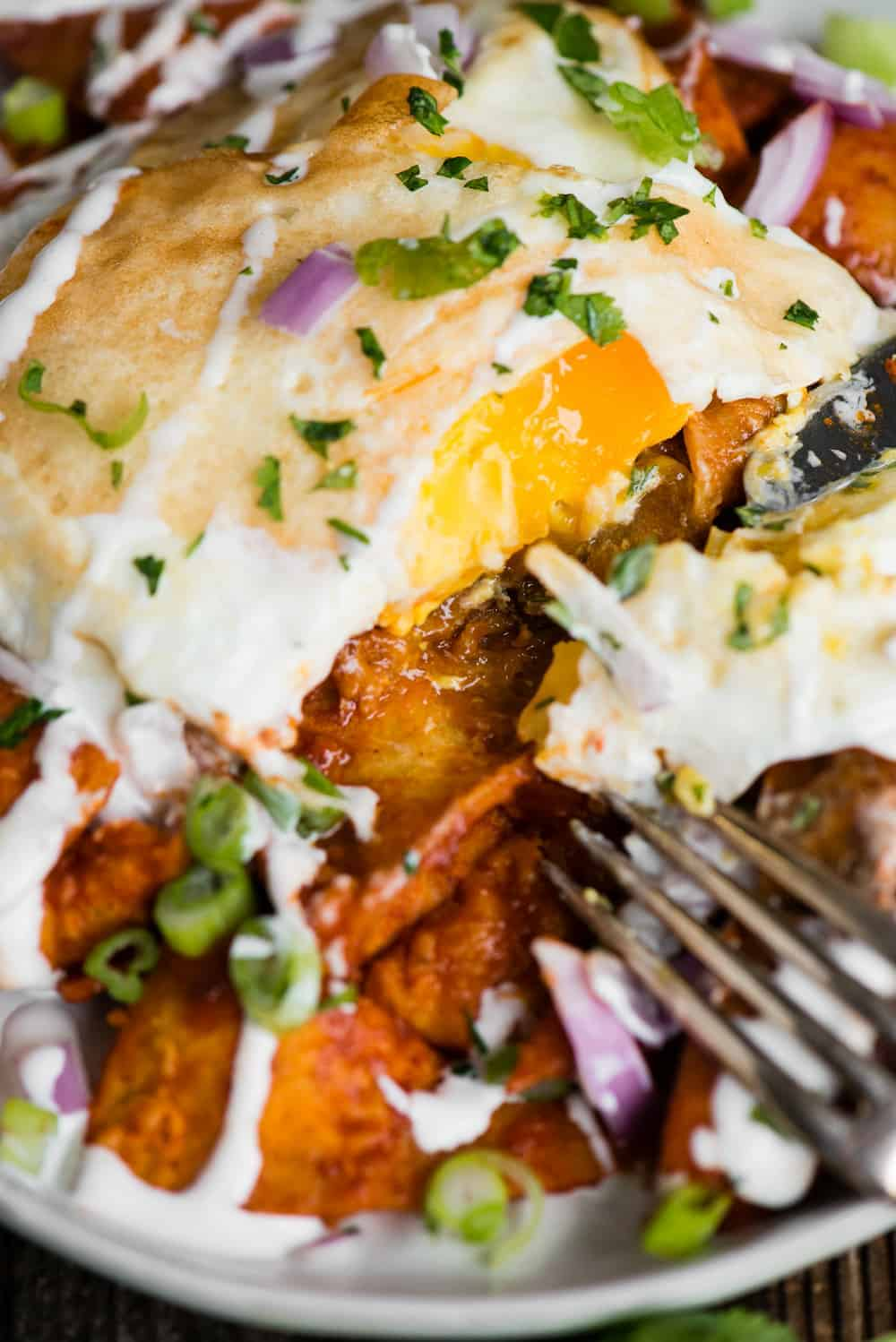 Chilaquiles rojos with fried eggs for breakfast
