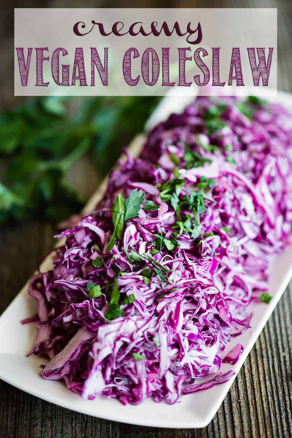 If you're looking for a tasty creamy coleslaw recipe that can be served to most anyone because there is no dairy nor eggs, this Creamy Vegan Coleslaw is the recipe you want! #coleslaw #vegan #vegancoleslaw #coleslawrecipe #coleslawdressing #healthycoleslaw #creamycoleslaw #vegancoleslawrecipe #vegancoleslawdressing #creamyvegancoleslaw #easyvegancoleslaw #dairyfreecoleslaw