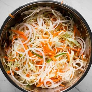 Curtido cabbage slaw vegetables
