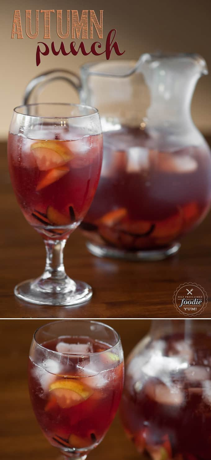 You can't go wrong with the Fall flavors of plum, pear, apple, cranberry, spices and wine in this delicious and easy to make Autumn Punch.
