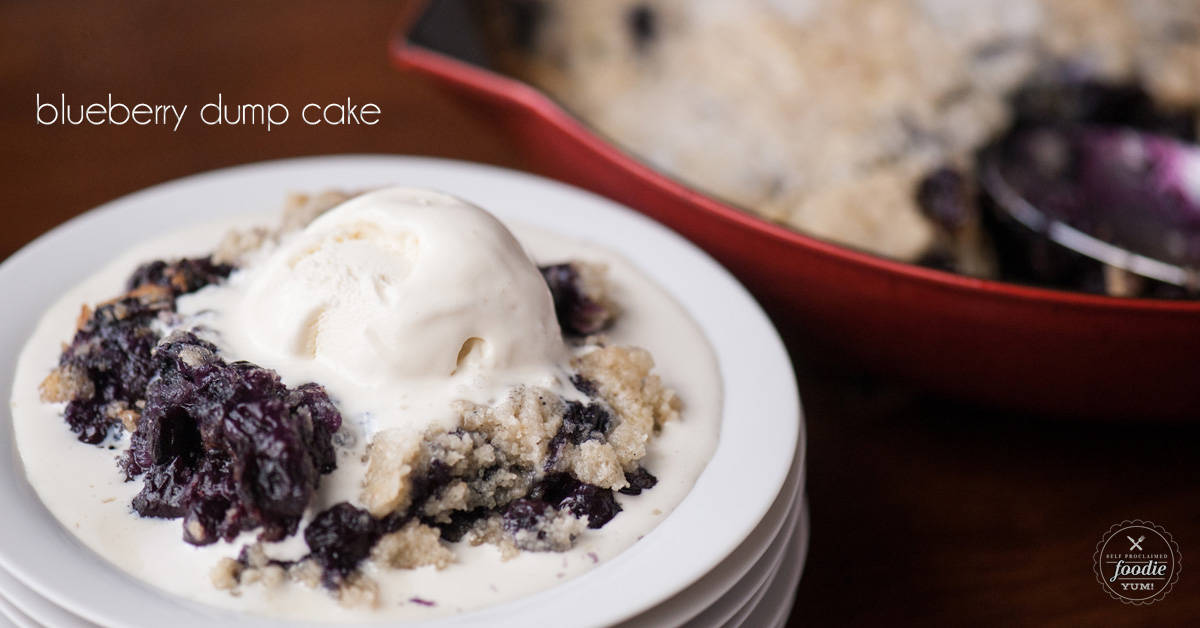 blueberry dump cake blueberry dump cake self proclaimed foodie 1972