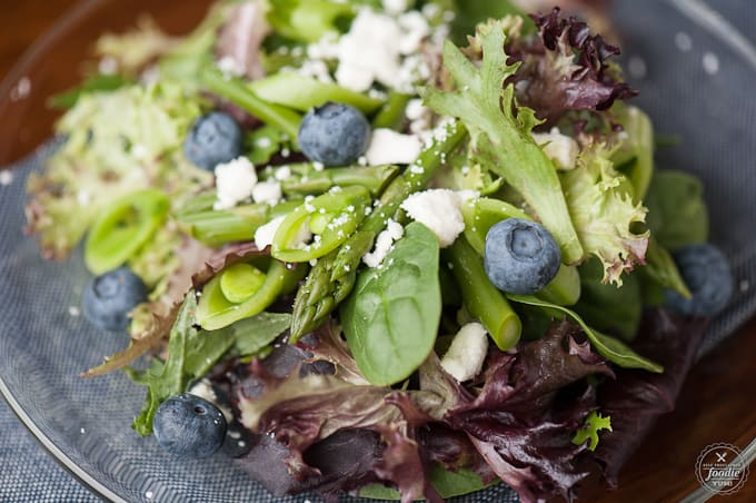 Can you think of a better lunch than a delicious and healthy Blueberry Vinaigrette Summer Salad made with a homemade salad dressing from fresh blueberries?