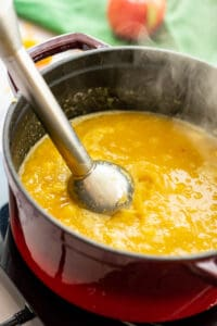 immersion blender for squash soup