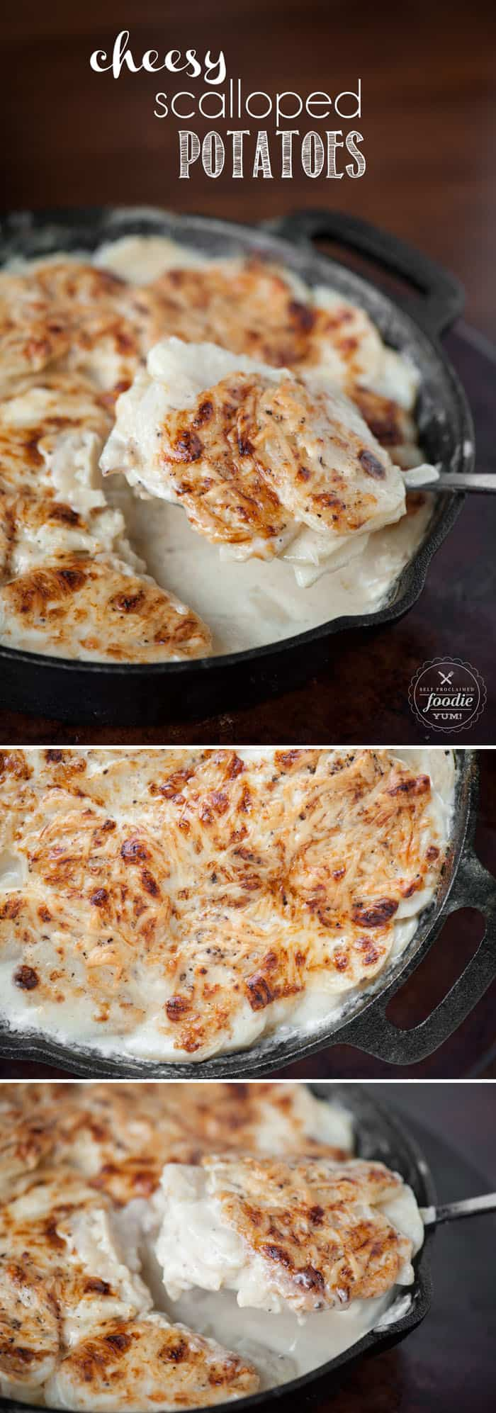 These Cheesy Scalloped Potatoes are so tender and flavorful, they make the perfect side dish at dinner and even taste great leftover or for breakfast!
