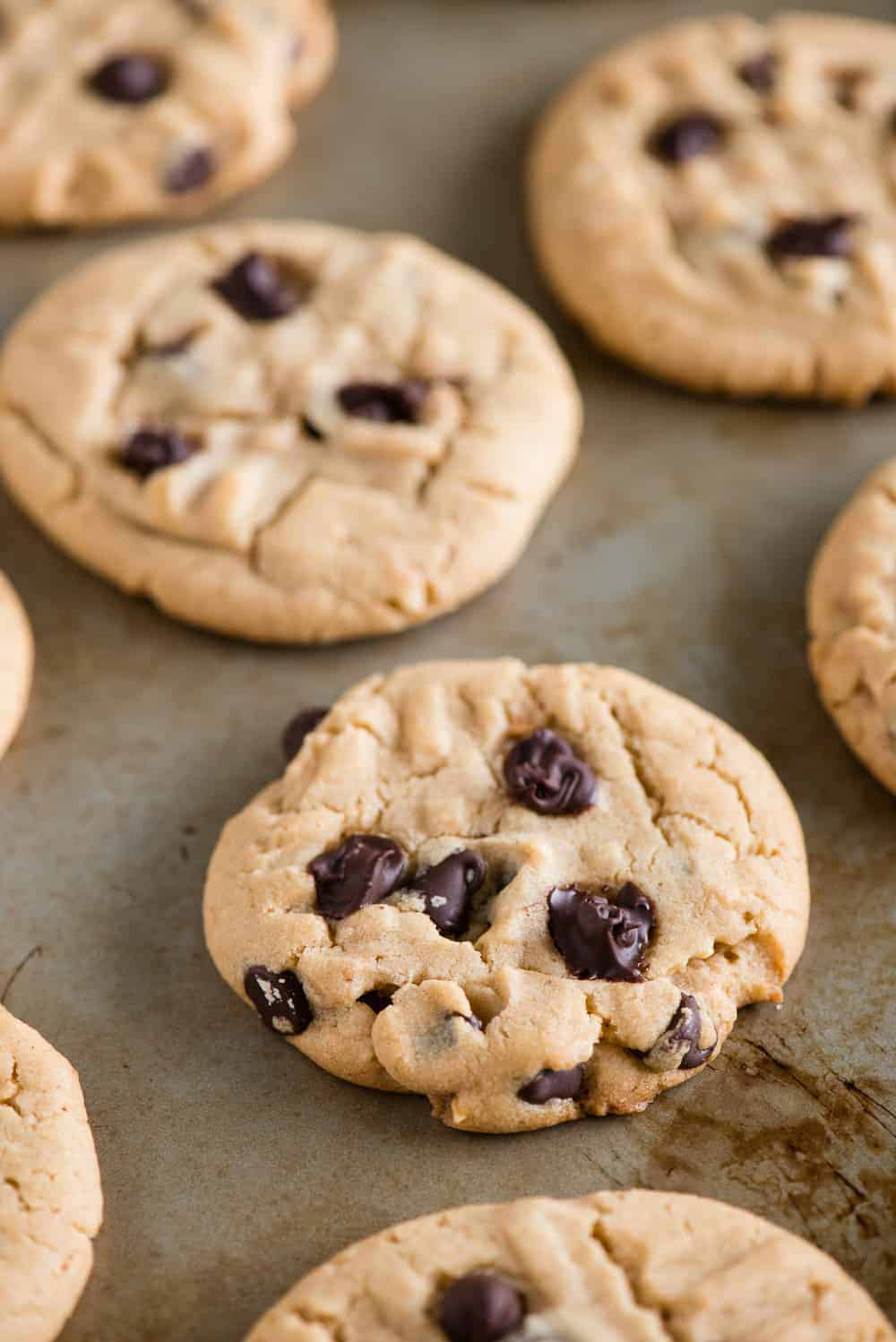delicious homemade Chocolate Chip Peanut Butter Cookies