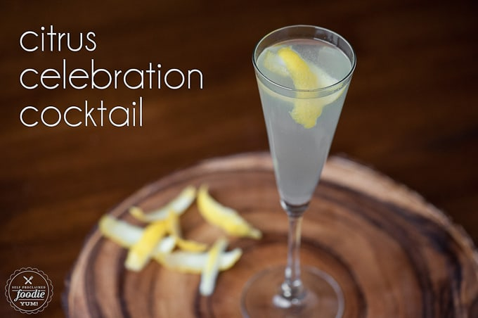 Citrus Celebration Cocktail - Self Proclaimed Foodie