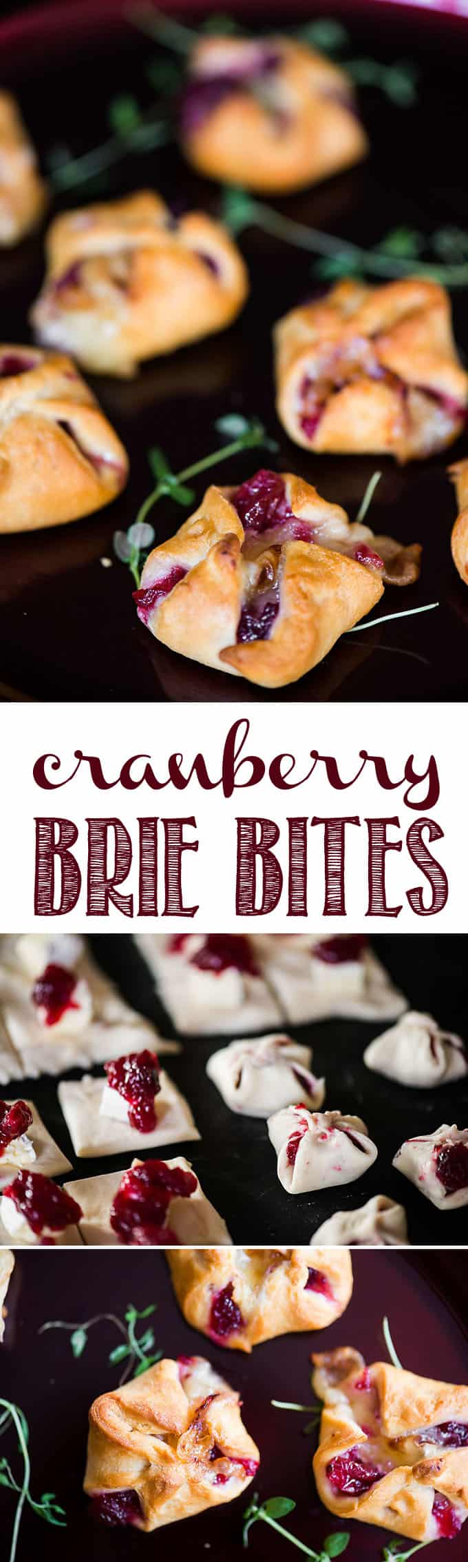 Cranberry Brie Bites are an easy three ingredient appetizer that are perfect for holiday parties. Warm and delicious - everyone will love them! #cranberrybrie #holidayentertaining #appetizer