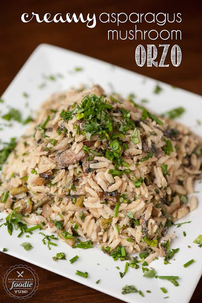 Perfect for a hot dinner side dish or a cold potluck picnic item, this Creamy Asparagus Mushroom Orzo is easy to make and a great compliment to any meal.