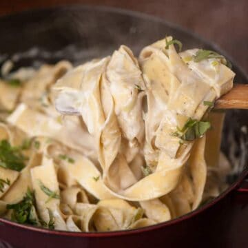 a scoop of creamy Meyer lemon pasta