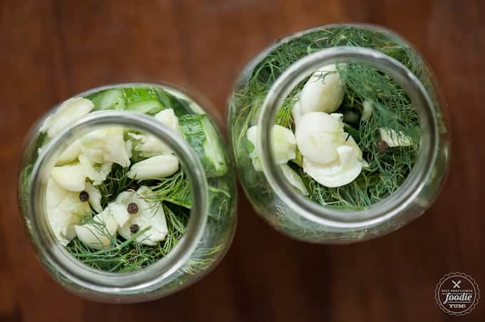mason jars filled with cucumbers, garlic, dill, peppercorns