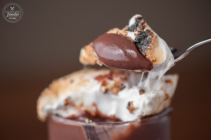 If you're a lover of s'mores, than these Five Minute Pudding S'mores are for you. Layer after layer of pure decadence and it is so easy to make!