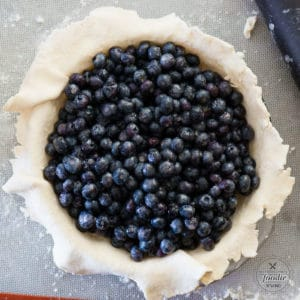 pie shell with fresh blueberries