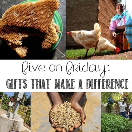 Five on Friday: Gifts that Make a Difference