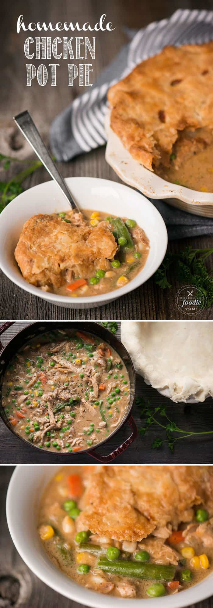 Homemade chicken pot pie self proclaimed foodie sometimes you just cant beat a classic and theres no better comfort food forumfinder Gallery