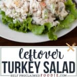 leftover turkey salad recipe