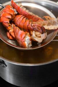 straining lobster stock