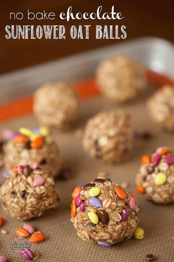 sunflower oat balls with chocolate