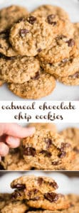 The best chewy Oatmeal Chocolate Chip Cookies Recipe