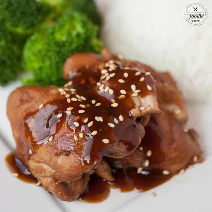 a close up of shoyu chicken