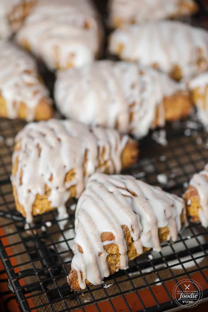 Sit back and relax with a hot cup of tea and these homemade Pumpkin Spice Scones. No matter the time of day, you should sip joyfully and enjoy a treat!