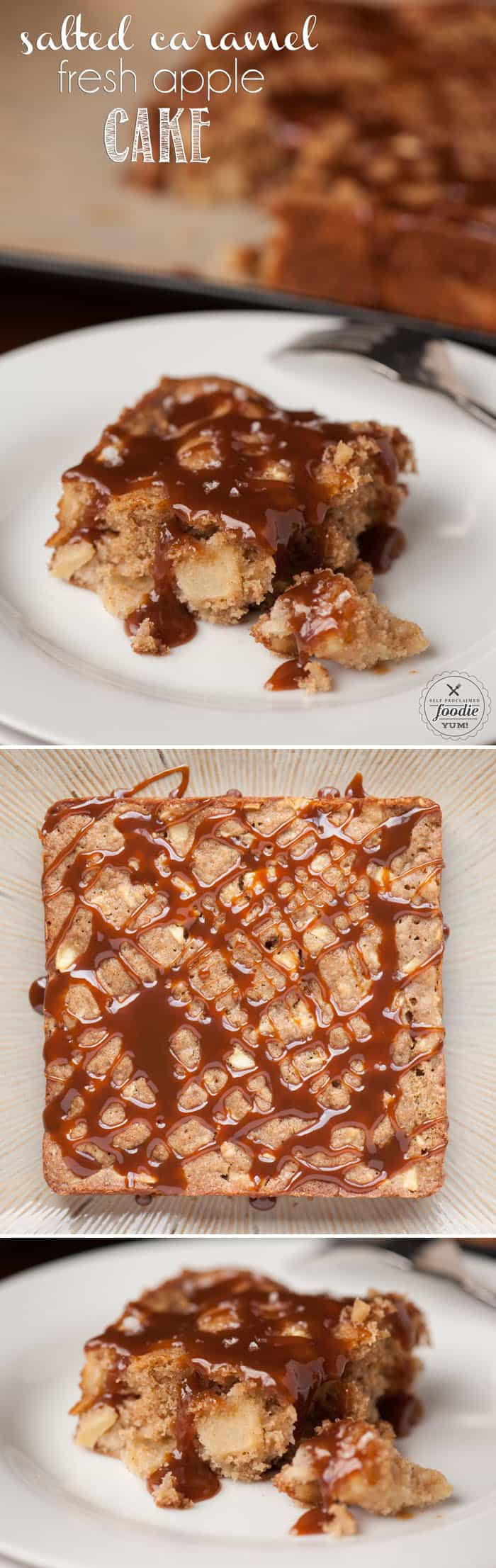This super moist and delicious Salted Caramel Fresh Apple Cake is loaded with fresh apple chunks and combines the perfect amount of sweet and spice.