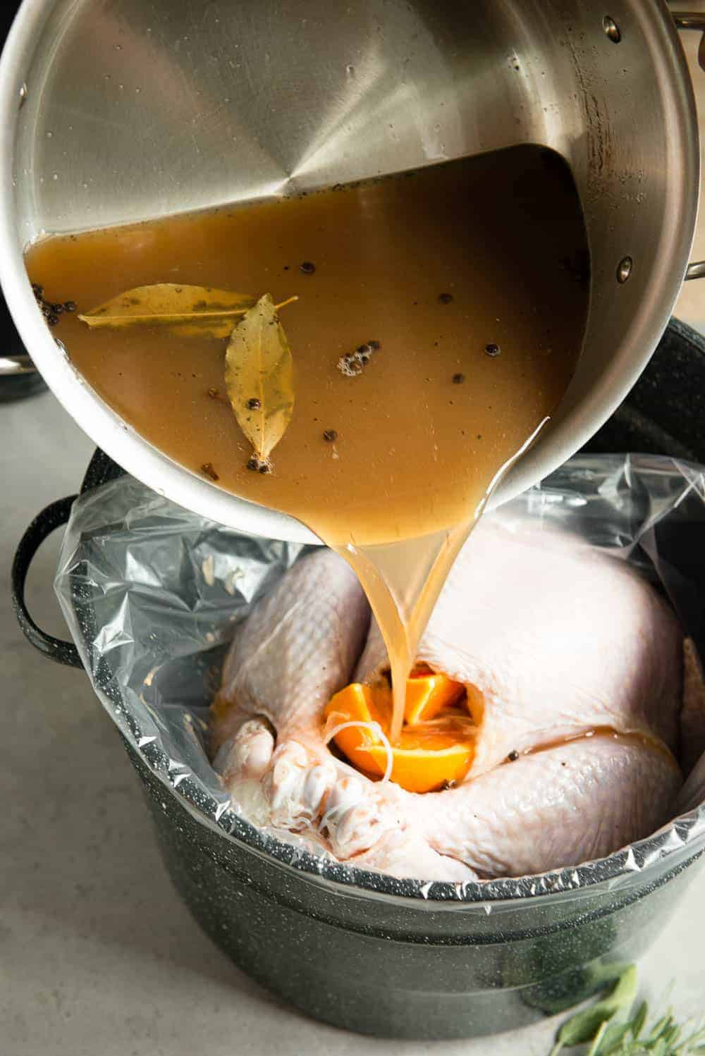 pouring apple cider onto turkey for brine