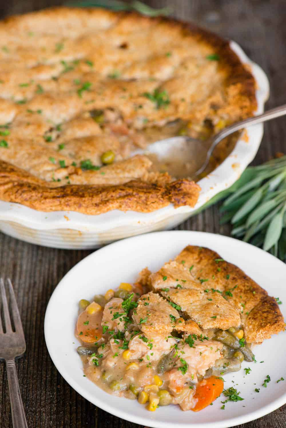 homemade crust with turkey, gravy, and vegetable pot pie on plate