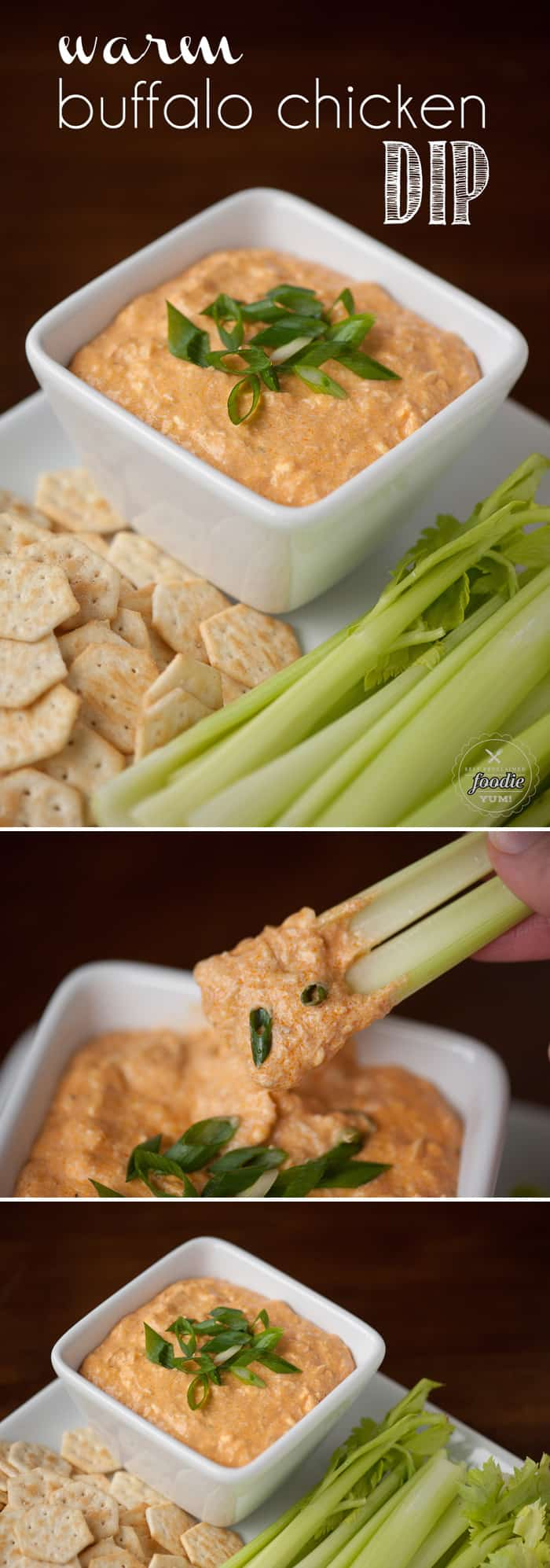 This Warm Buffalo Chicken Dip is super easy to make and is so tasty that it will be the hit at any tailgating or game day get together.
